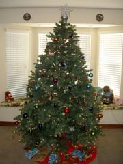 Highlight for Album: Christmas 2007