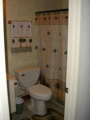 Highlight for Album: Bathroom Remodel Jan. 08